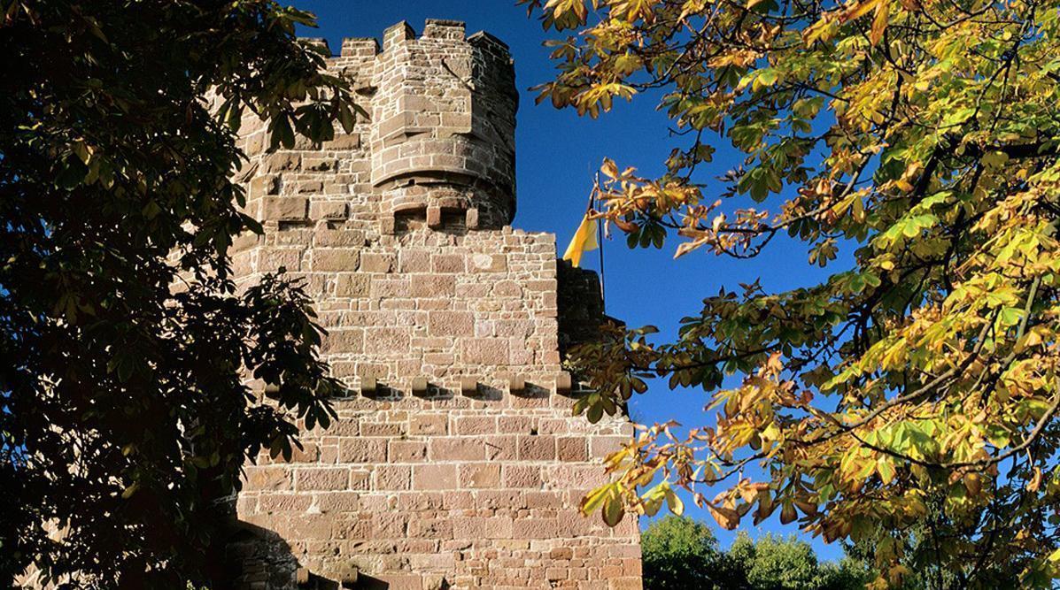 Detail der Burgfeste Dilsberg; Foto: Landesmedienzentrum Baden-Württemberg, Arnim Weischer