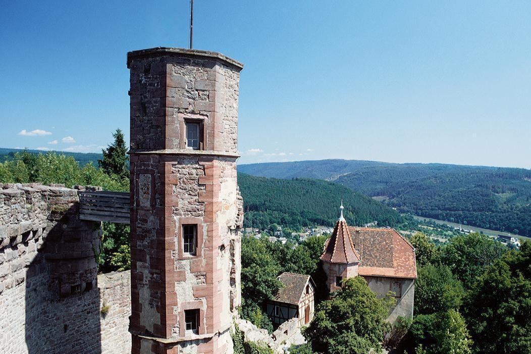 Ruines du château-fort de Dilsberg